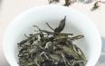 老树白茶珍藏品寿眉