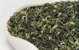 碧螺春是属于红茶还是青茶