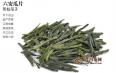 六安瓜片是属于红茶还是属于绿茶