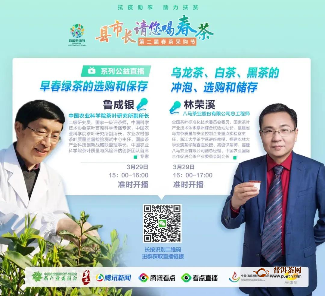"""11位湖北县市州长清明集体直播为茶吆喝,奏响湖北茶""""奋战之音""""!"""