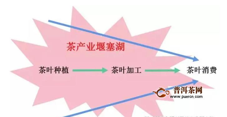 """李颖悟:如何消除茶产业""""堰塞湖"""""""