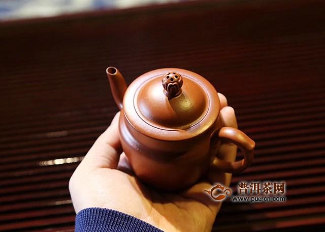 朱泥紫砂壶适合用什么茶叶泡养