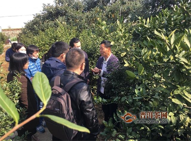 苏州经贸学院教师助碧螺春扩宽网销渠道