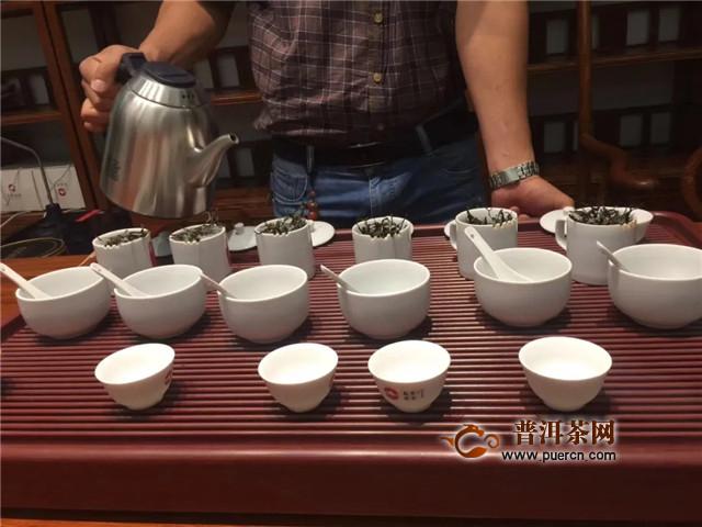 东卓茶业:千里自驾游,别一番茶山行感受