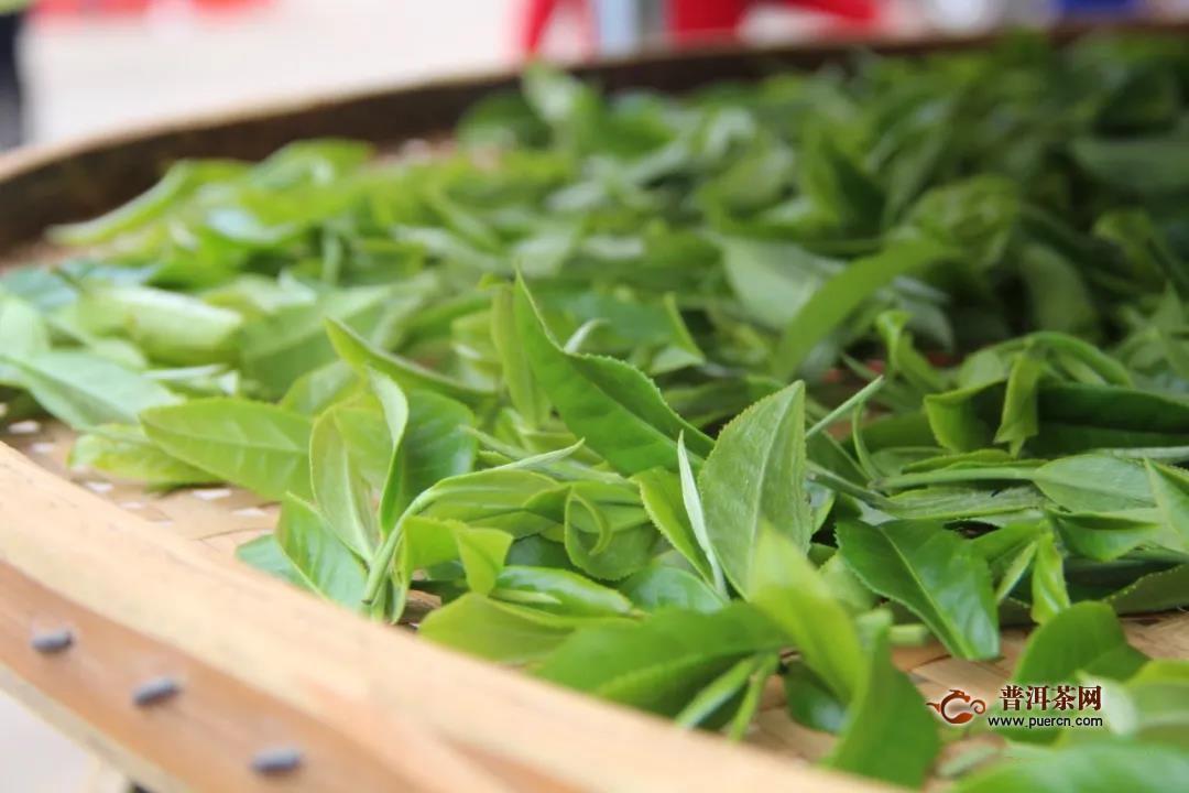 2020年贵州春茶产销调查报告出炉