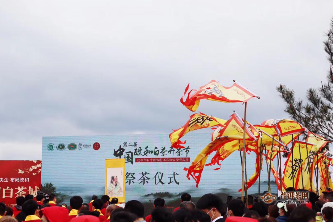 第二届中国政和白茶开茶节成功举办