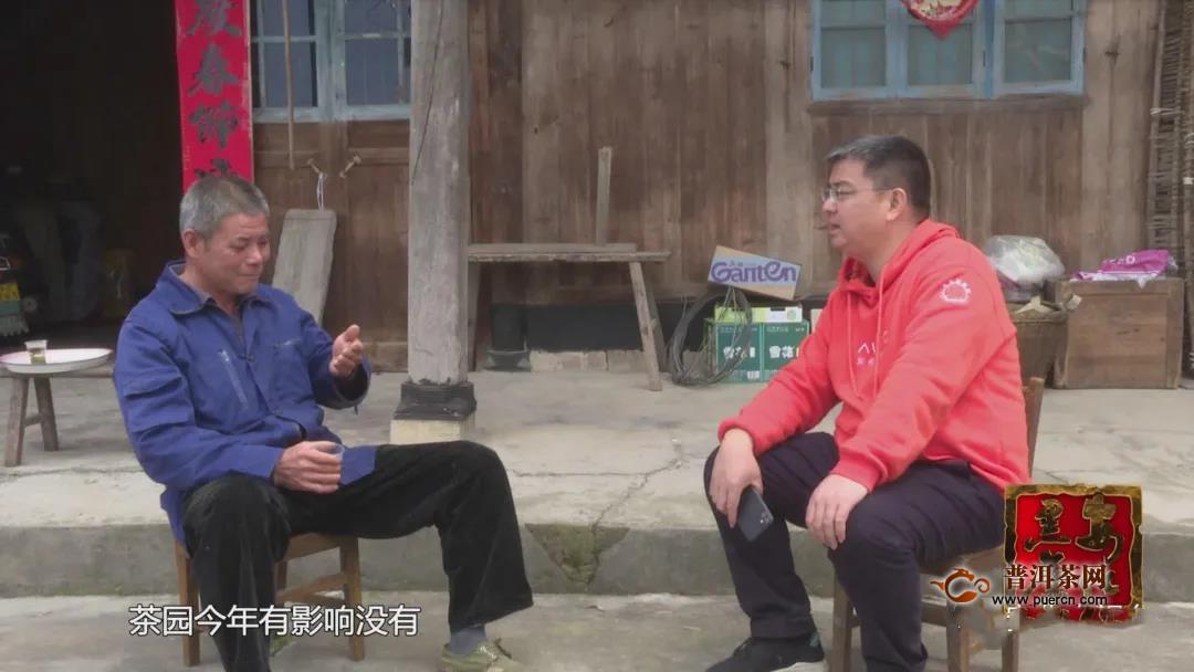 安化网红县长陈灿平的卖茶之路(上)