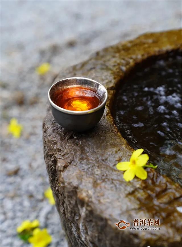 柏联普洱茶:云上喝茶,开启优雅生活方式