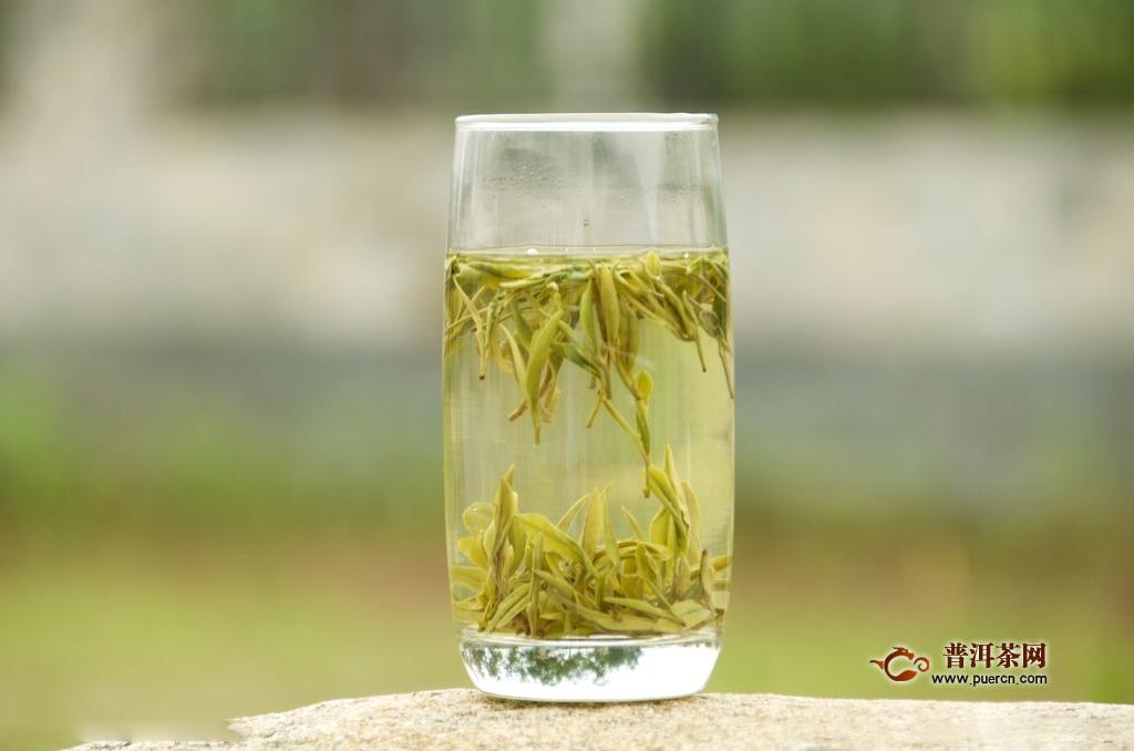 黄茶的泡法的正确方法