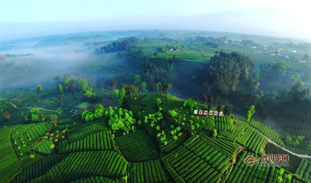 五星级园区:雅安市名山区蒙顶山茶叶现代农业园区