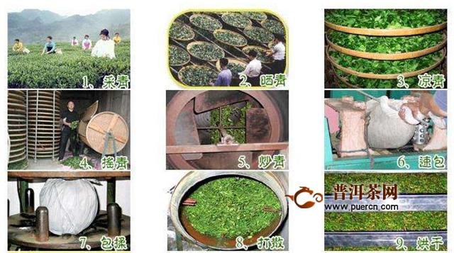 乌龙茶叶和铁观音茶叶