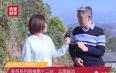 协会专家对2020年4月临沧春茶生产几点建议