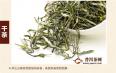 云雾茶属于红茶还是绿茶