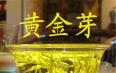 黄金芽属于红茶吗