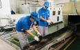 云南省落实支持政策创新销售模式 畅通茶产业发展堵点痛点