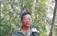 勐海县持续推进打击整治非法侵占林地、林下种茶