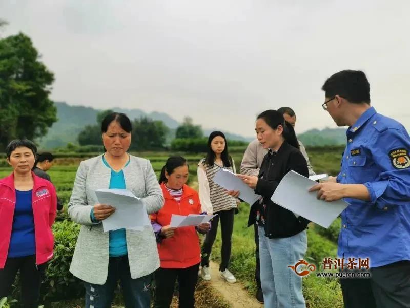 加强茶叶质量安全,湄潭马山镇这样做
