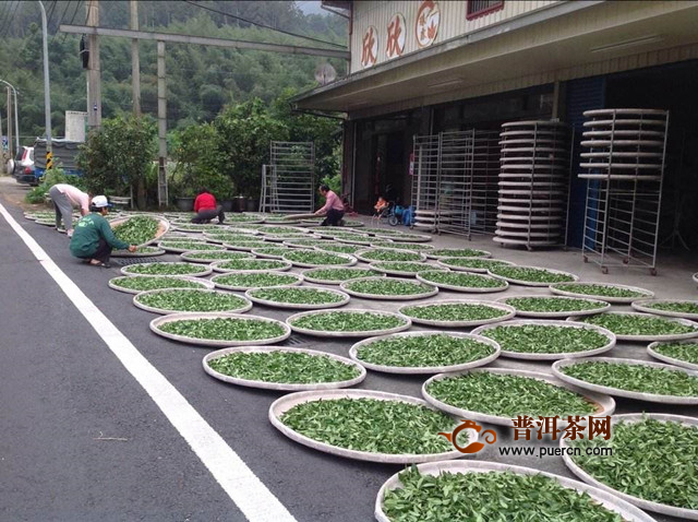 青茶是怎么制作的