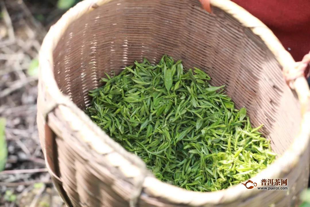 四月春茶交易旺季,交易量价实现双增!