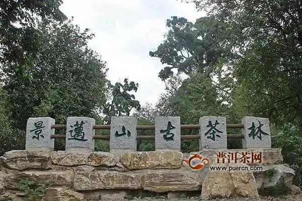 景邁山正申請世界文化遺產