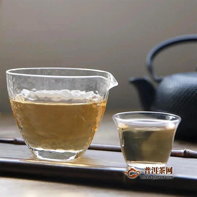 下关白茶:茶之白雪公主