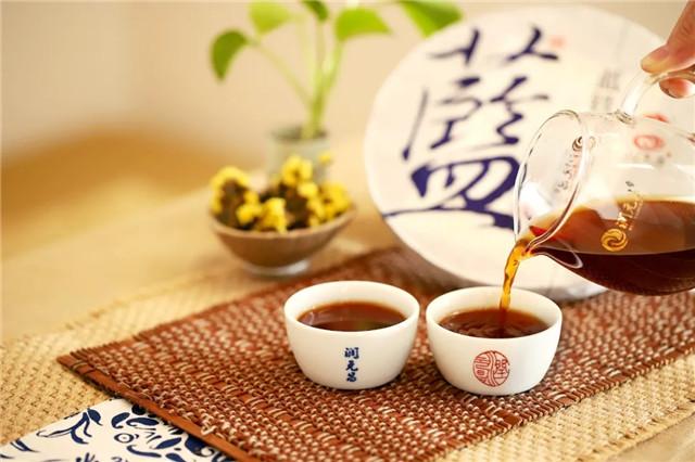 润元昌茶业:【熟茶篇】从普洱茶国标学普洱新茶品鉴