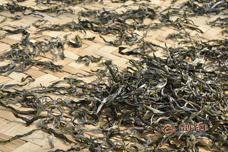 浅谈普洱生茶的香气,影响因素是哪些?