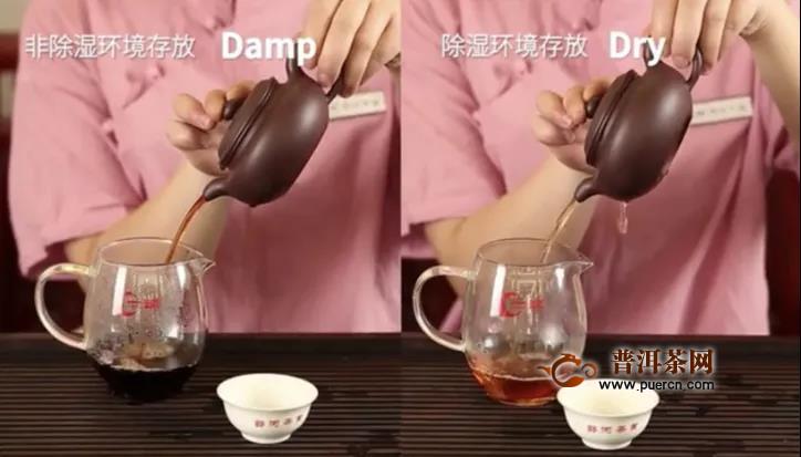 一球茶业:普洱茶仓储?99%的茶友都忽略的问题