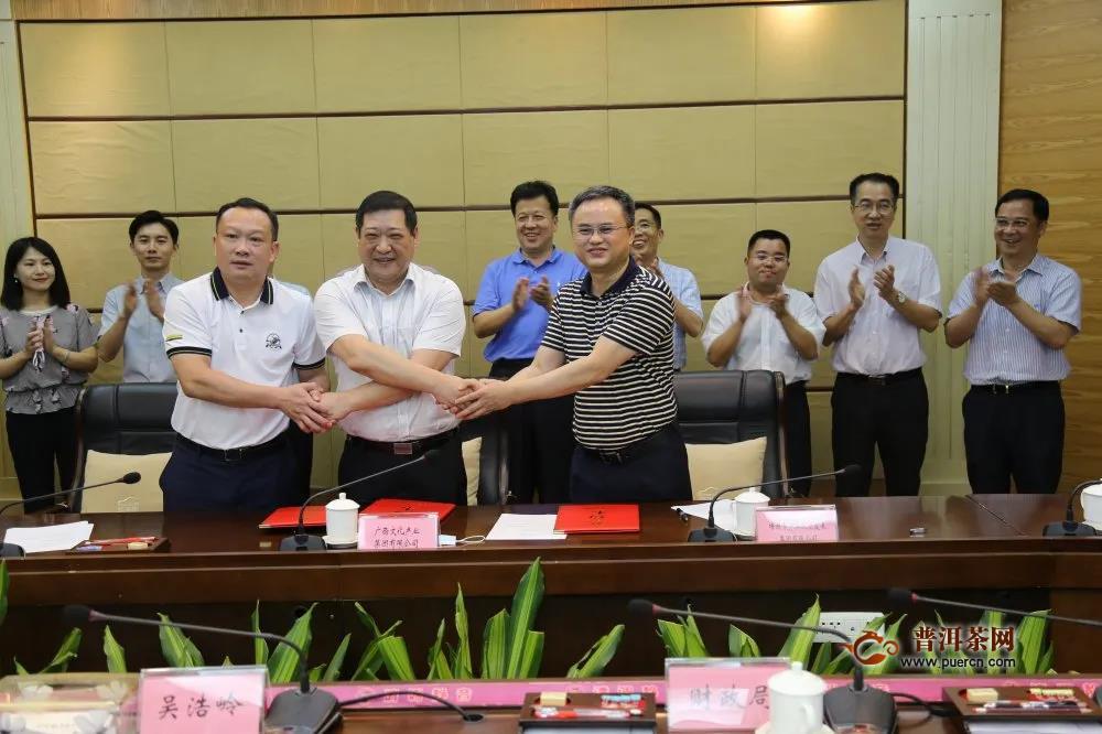 六堡茶交易中心合作框架协议签约仪式顺利举行