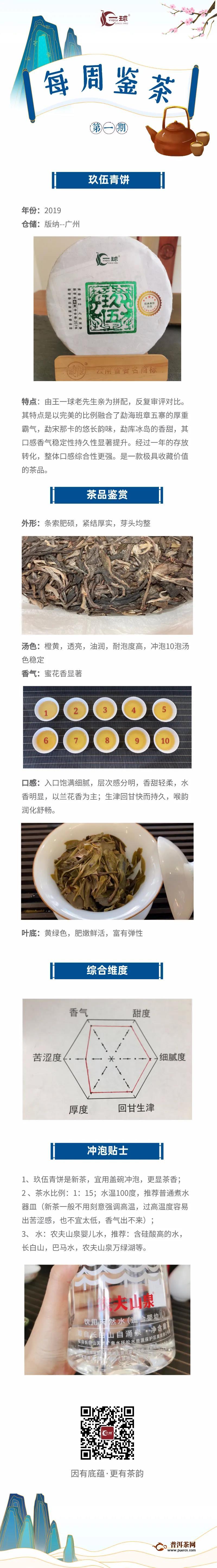 一球茶业每周鉴茶:玖伍青饼