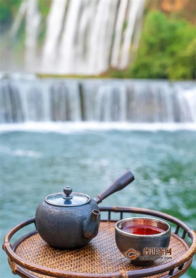 柏联茶园,一盏清茶遇见云茶天使