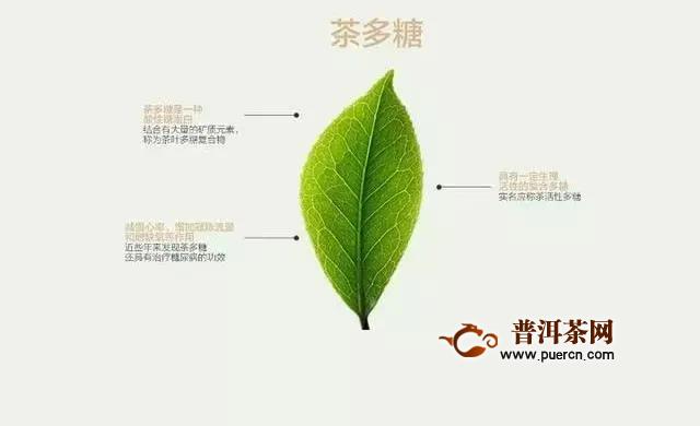 详解茶叶中的茶多糖