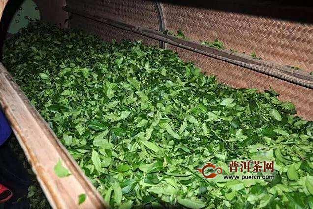 茶叶萎凋是什么意思