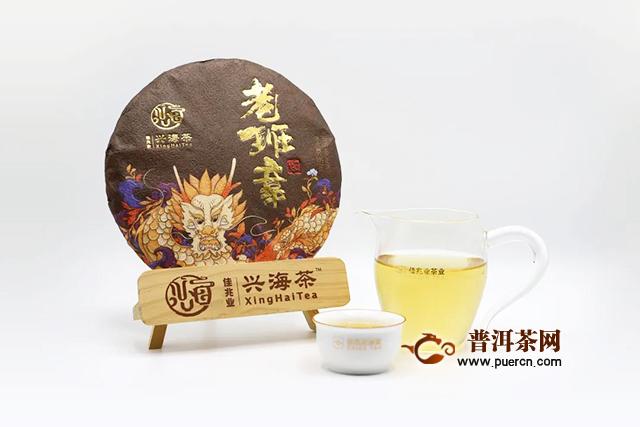 兴海2020年新品老班章品鉴详情