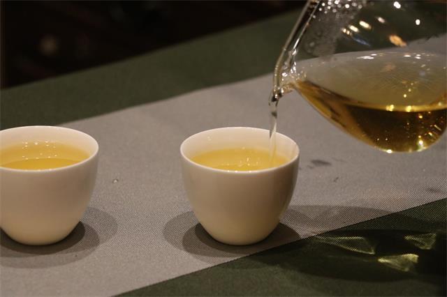 普洱生茶究竟怎么喝?