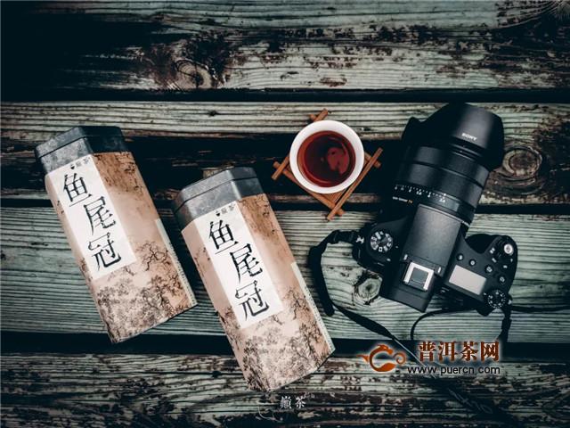 巅茶茶业:翠竹随风乐,尾鱼逐水流