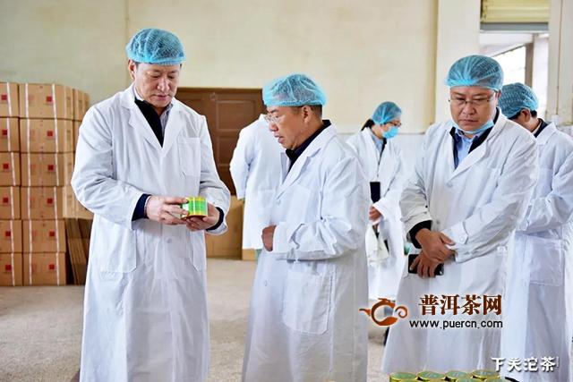云南省地方金融监管局李春晖局长一行莅临下关沱茶调研指导