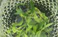 绿茶洗脸的功效与作用