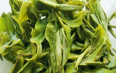 绿茶的功效与作用禁忌
