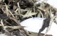 白茶是在什么季节制成