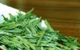 中国黄茶有哪些主要品种