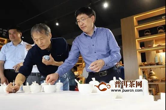 """中国茶叶学会举办""""日照绿茶""""茶叶品质评价会"""