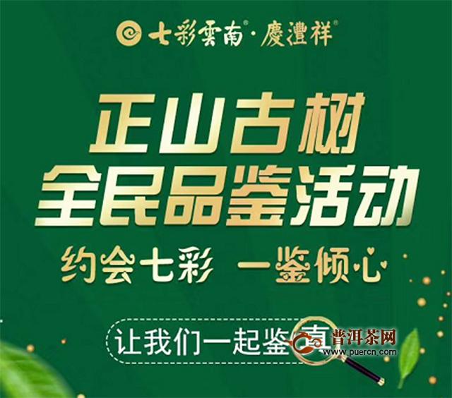 """七彩云南·庆沣祥2020""""真""""的见证——全球讲真督茶官刘园园"""
