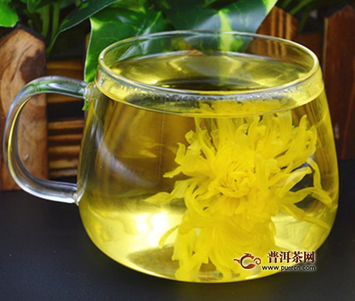 菊花茶选择什么样的茶最好