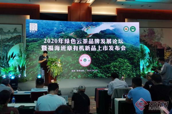 2020年绿色云茶品牌发展论坛举行,福海班章有机新品上市