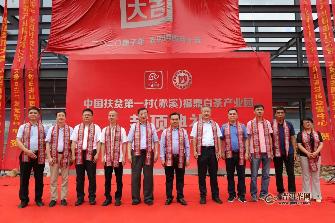 茶学界两位院士齐聚赤溪村,科技助力茶产业扶贫!