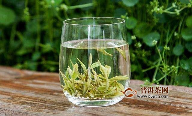 夏天喝绿茶的注意事项