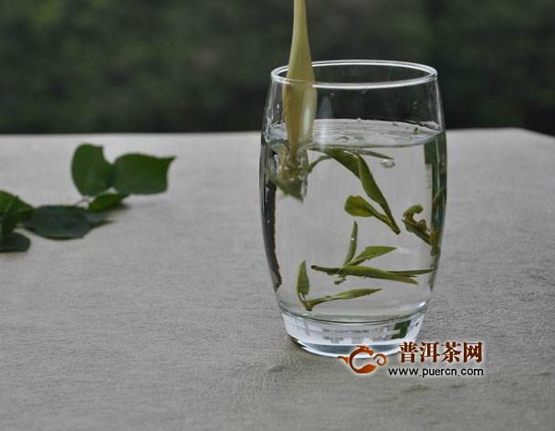 白茶的主要分类及基本特征