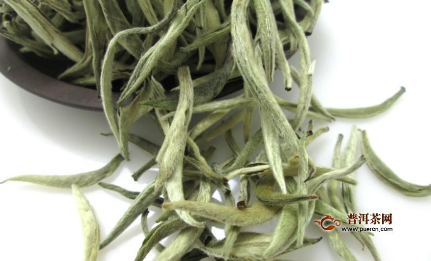白茶的上市时间是何时