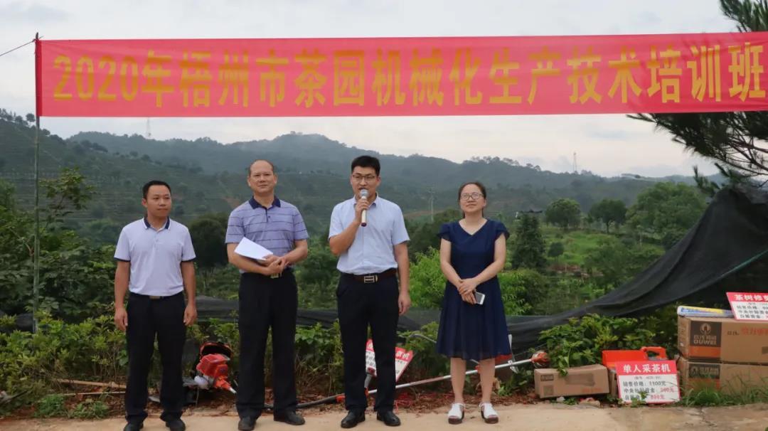 梧州市推进茶园管理机械化,服务茶产业发展
